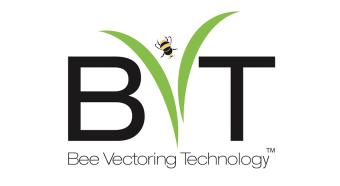 bvt b2b case study