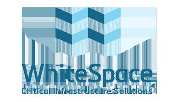whitespace b2b case study
